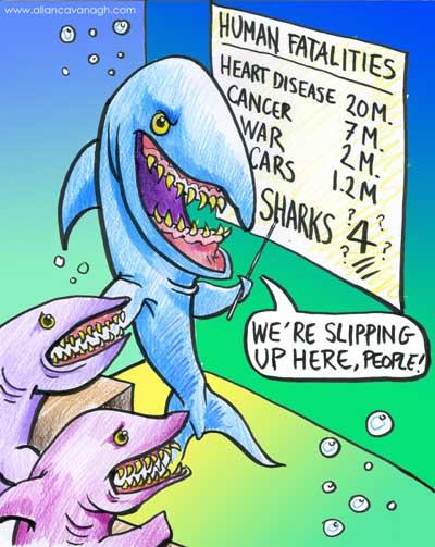 sharks-cartoon.jpg