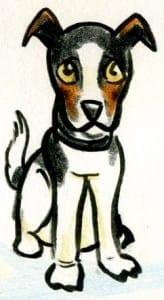 Dog Cartoon- Cartoon of a Jack Russell