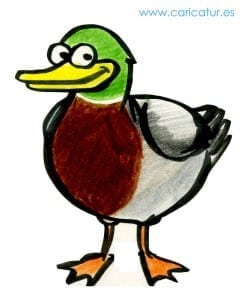 Duck Cartoon- Free Cartoon Duck!