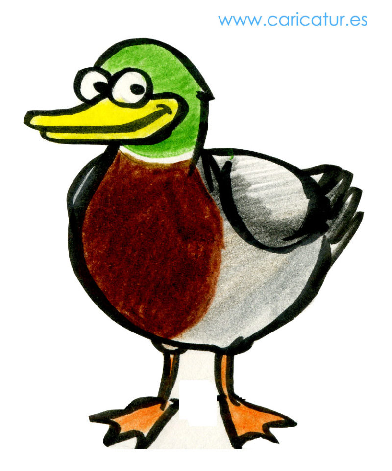 Cartoon of a duck
