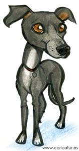 Greyhound Cartoon – Free Greyhound Clipart – Clipart Gallery