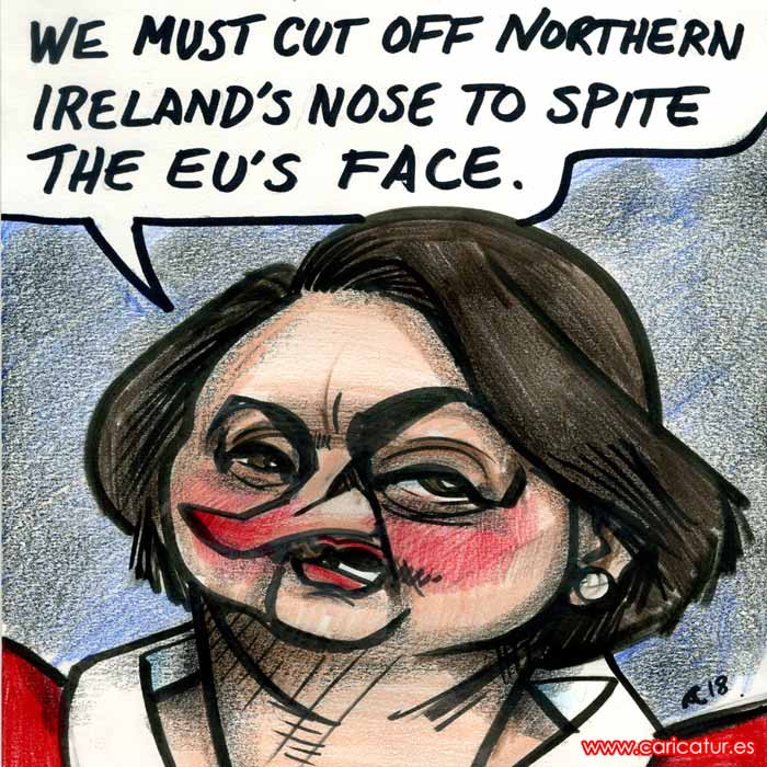 arlene foster brexit dup cartoon