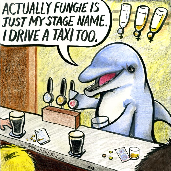 fungie dolphin cartoon dingle kerry
