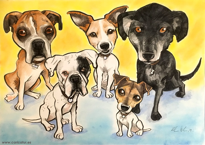 pet portrait dog caricature ireland