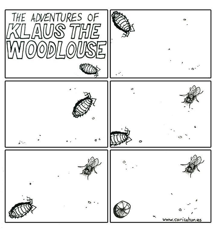 klaus the woodlouse 710px