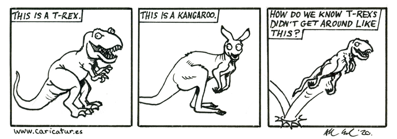 """3 panel cartoon of a T-Rex and a Kangaroo. The first panel shows a silly looking T-Rex with a caption that says """"This is a T-Rex."""" The second panel shows a kangaroo with the caption """"this is a kangaroo."""" The third panel shows a T-Rex hopping like a kangaroo with a caption that says """"How do we know T-Rexs didn't get around like this?"""""""