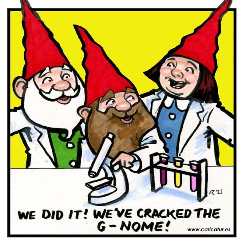 gnome cartoon
