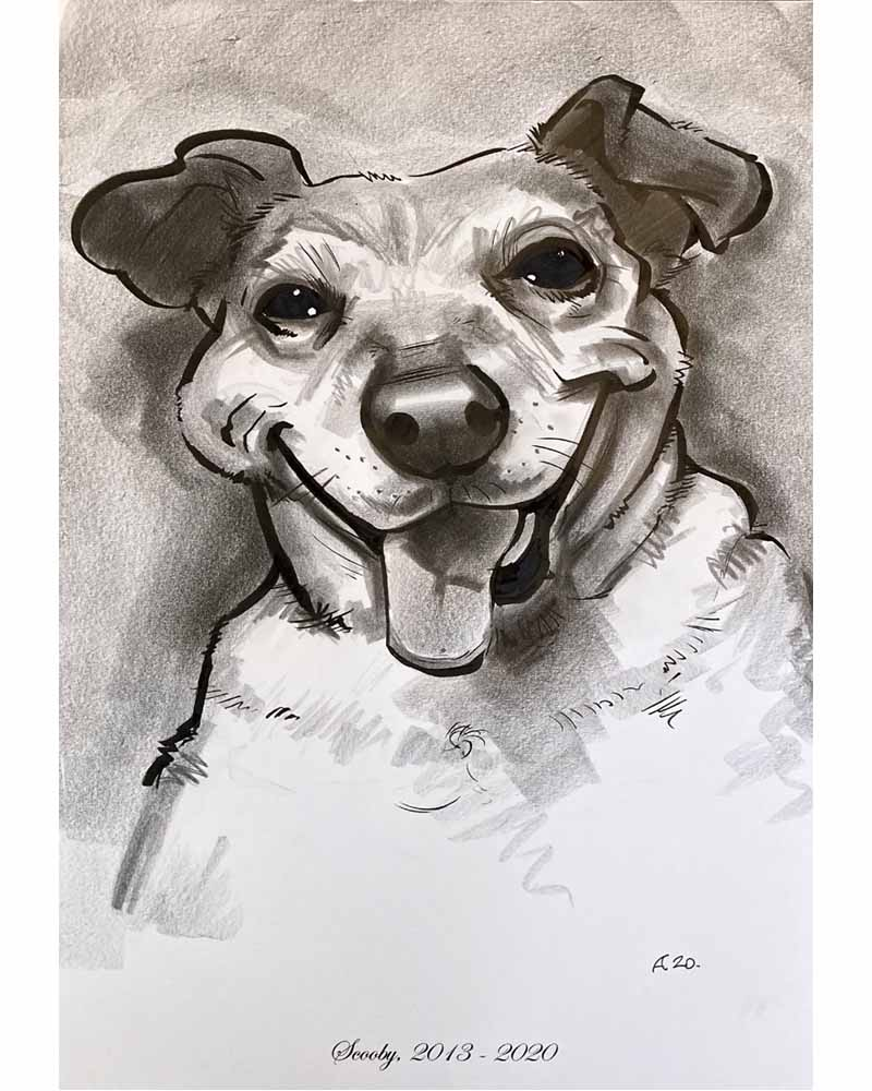 pet dog caricature portrait