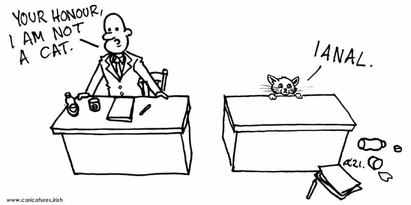 i am not a cat lawyer zoom filter cartoon allan cavanagh